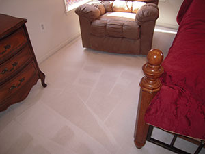 sofa and carpet cleaning anne arundel